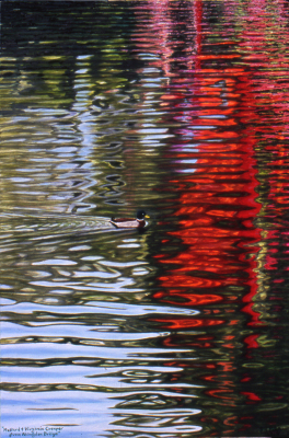 Mallard and Virginia Creeper from Abingdon Bridge